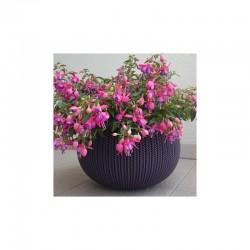 Ghiveci pentru flori, rotund, suspendabil, mov - 2
