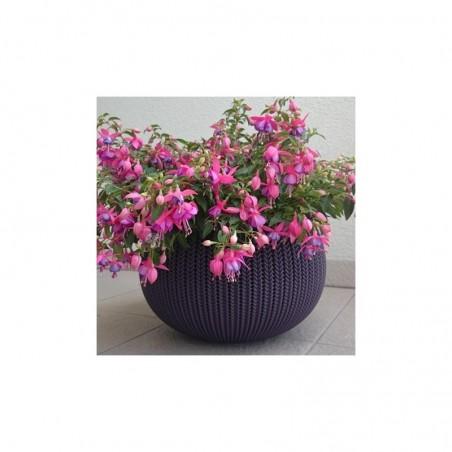 Ghiveci pentru flori, rotund, suspendabil, mov - 1