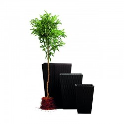 Ghiveci pentru flori, dreptunghiular, antracit - 1