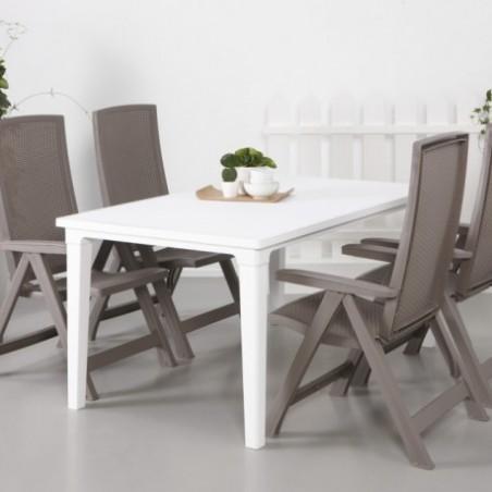 Set 2 scaune pliante pentru gradina, cappuccino - 5
